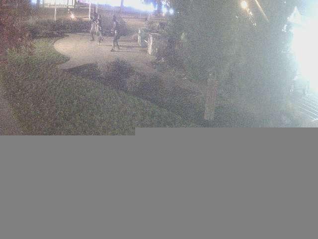 webcam image 2